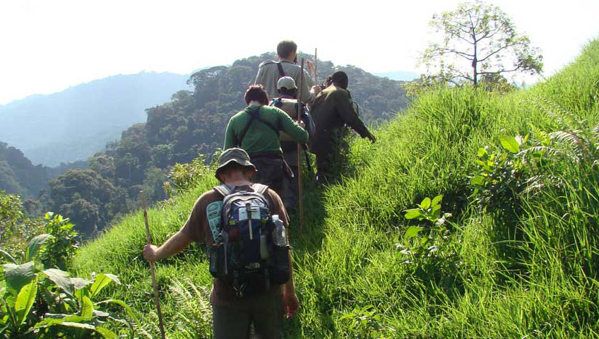 Trekking Safaris